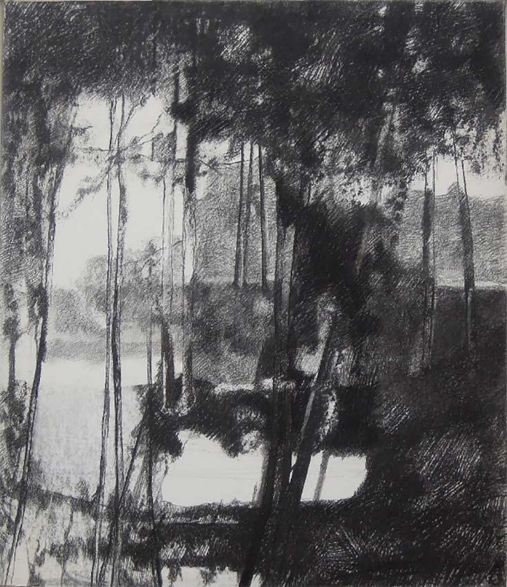 Abelle Sauvat Jardin d'été, fusain sur non-tissé 152 x 236,5 cm  © photo APEVDC